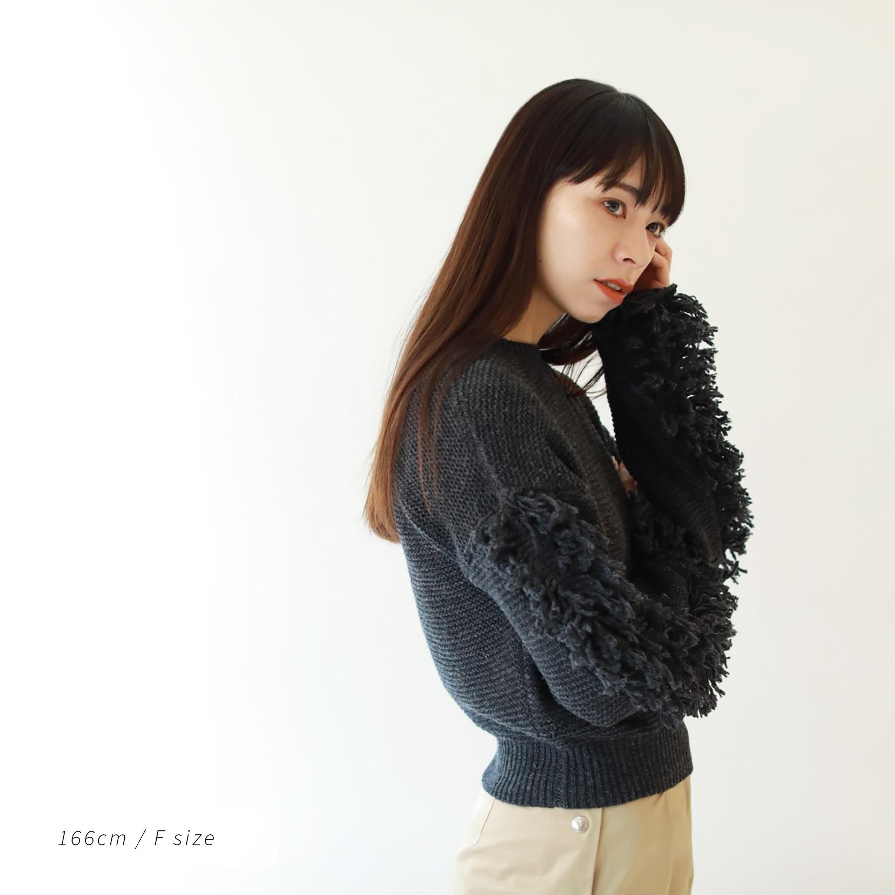 Fringe Sleeve Knit